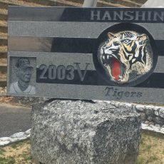 阪神タイガース春季キャンプin安芸