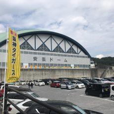 阪神タイガース2017秋季キャンプ