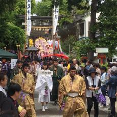 【第27回 土佐一条公家行列 藤祭り】が華やかに開催されました。