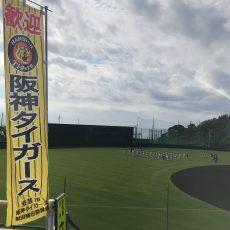 2018 阪神タイガース秋季キャンプ