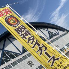 2019 阪神タイガース秋季キャンプ!
