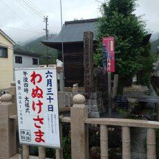 """高知の夏の始まり""""わぬけ様"""""""